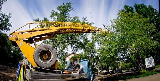 В Челябинске планируют масштабное благоустройство сквера в Центральном районе