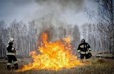Дожди снизили количество лесных пожаров наЮжном Урале