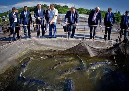 Руководство Челябинской области может предоставить госгарантии осетровому рыбзаводу