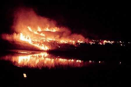 ВЧелябинской области произошел пожар наполигоне площадью 30 гектаров