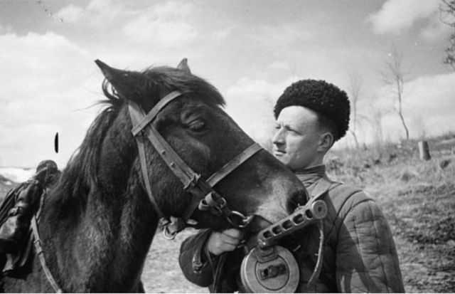 Как три тысячи троицких лошадей отправились воевать