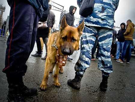 Милиция арестовала мужчину, поджегшего склады вцентре Челябинска