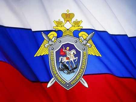 ВЧелябинской области по неведомым  причинам погибли  два ребёнка