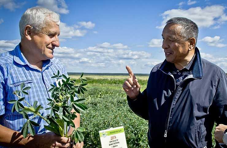 Аграрии Южного Урала получат 38,5 млн наэлитные семена