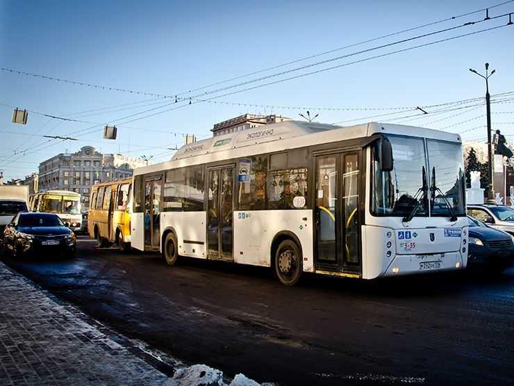 Шишкоедов_DSC3453__дорога,-транспорт,-автобус,-газомоторное-топливо.jpg