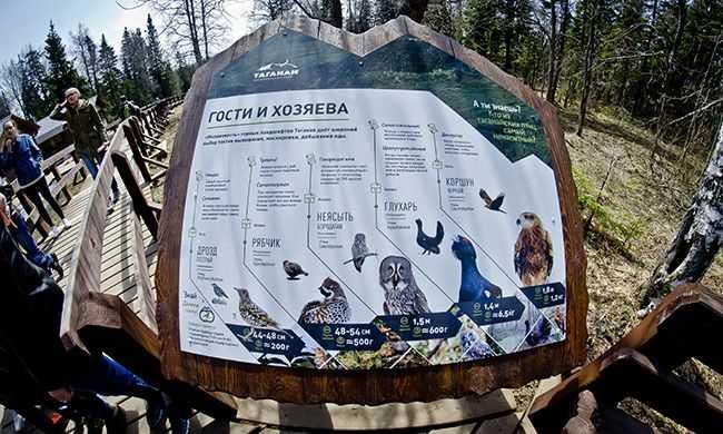 топ-туризм_Таганай_Шишкоедов_DSC7008_Таганай,-туристическая-тропа,-плакат,-информация.jpg