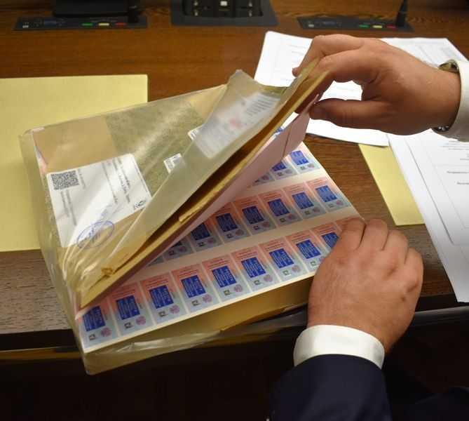 В Челябинской области специальные знаки защитят от подделки заявления избирателей